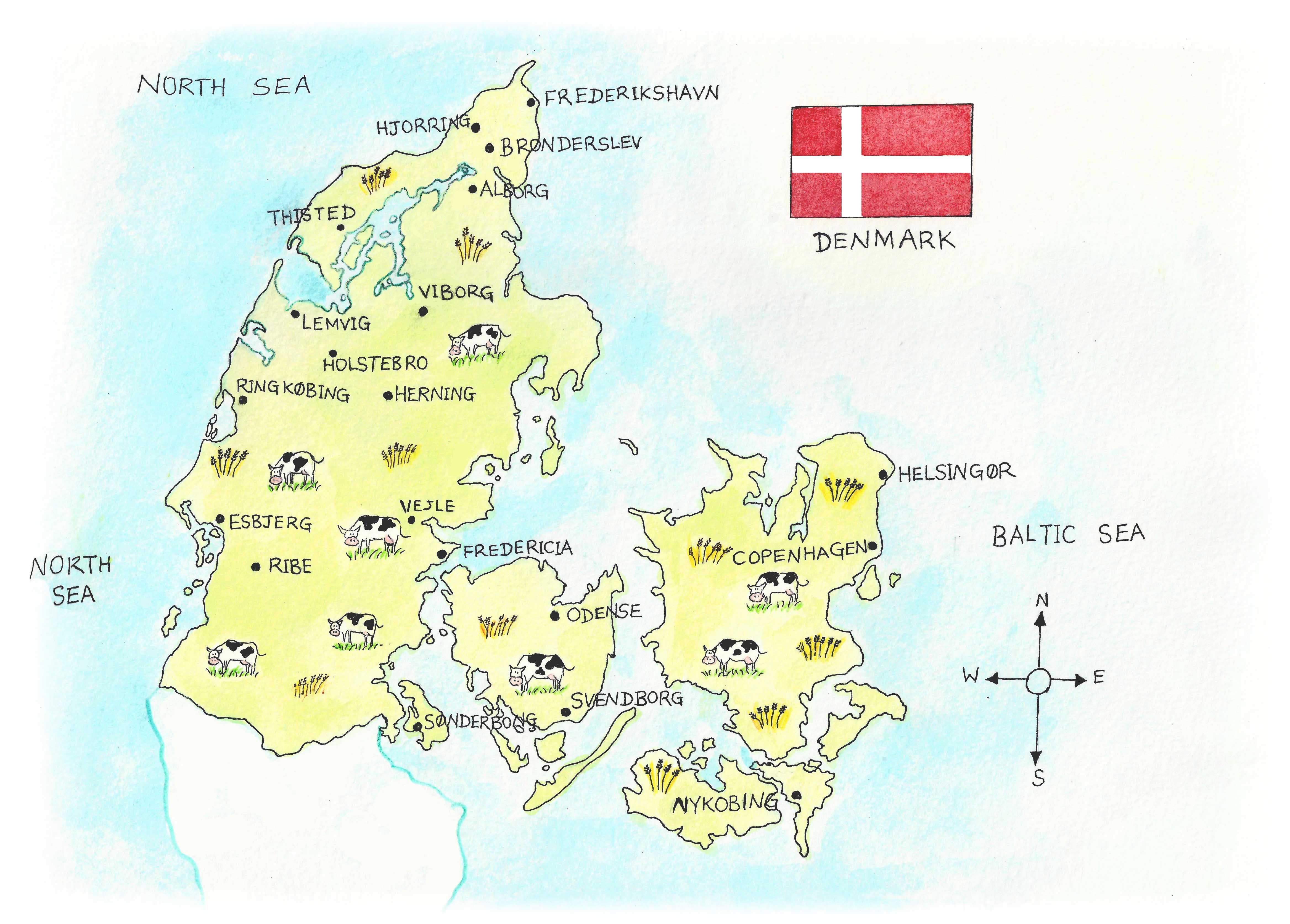 Danish Food-4