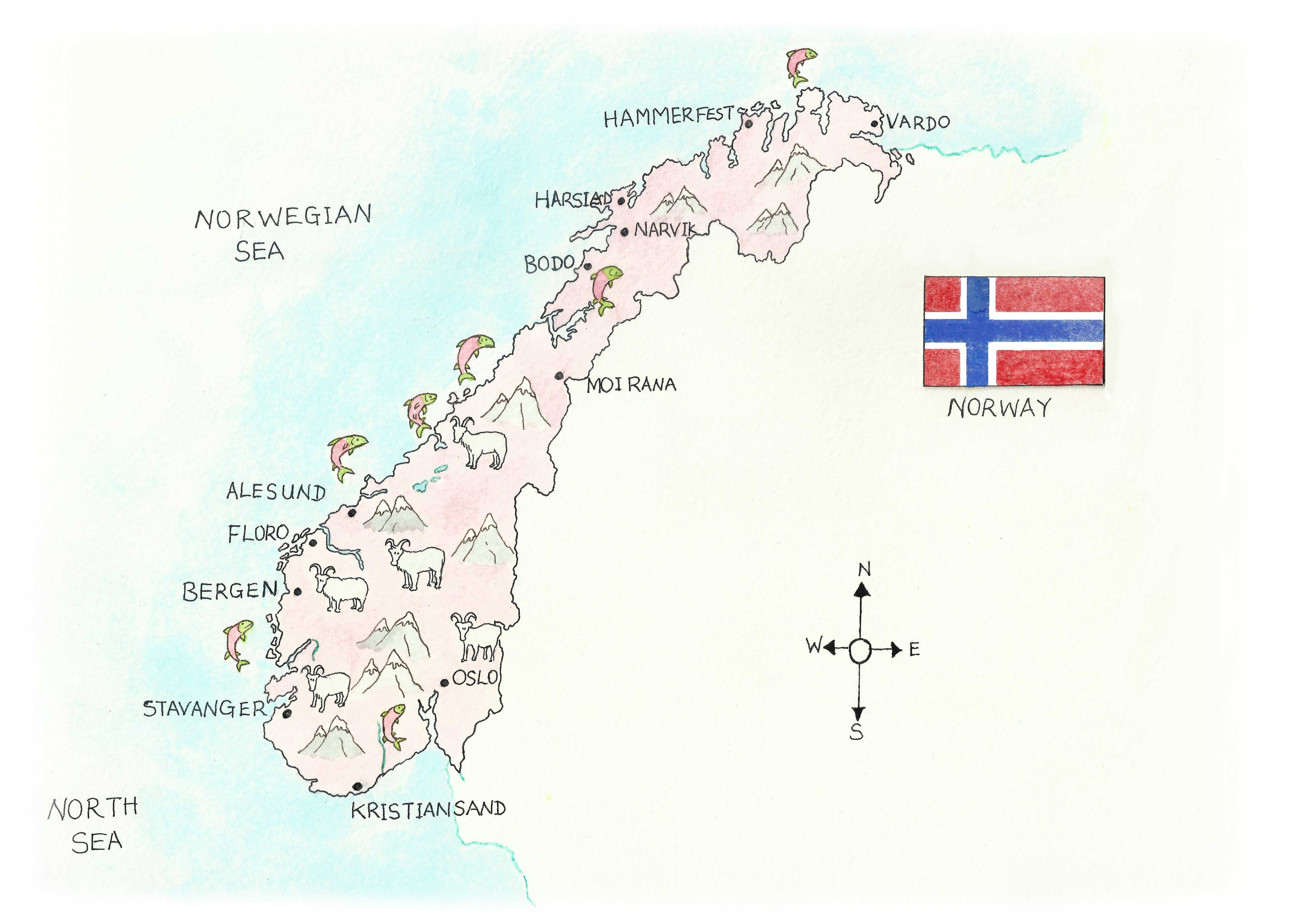 Norwegian food2