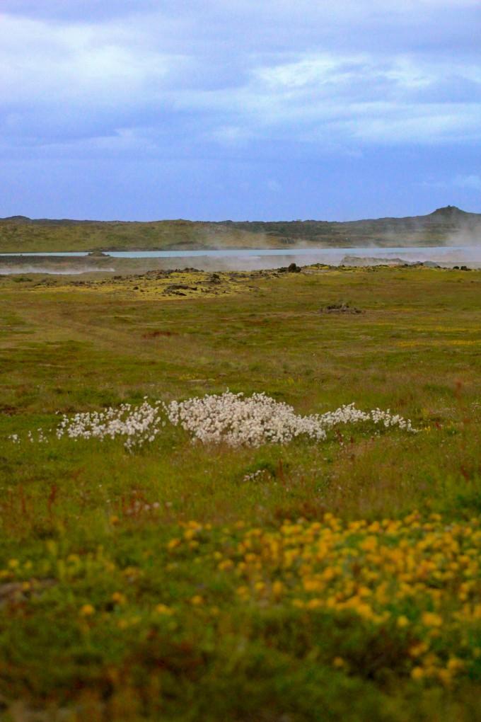 Þingvellir Nature photography