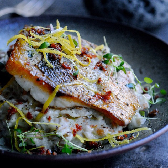 Pan fried zander with bacon, lemon and thyme. Served with the creamiest cauliflower spelt risotto. Direct link to recipe in profile. #zander #fish #fishoftheday #fishfordinner #fisk #spelt #risotto #speltotto #lemon #bacon #thyme #wholegrains #healthydinner #healthyeating #healthyliving #juliekarladk #karlasnordickitchen